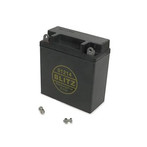 AGM-Batterie (Vlies - wartungsfrei) 6V 12Ah
