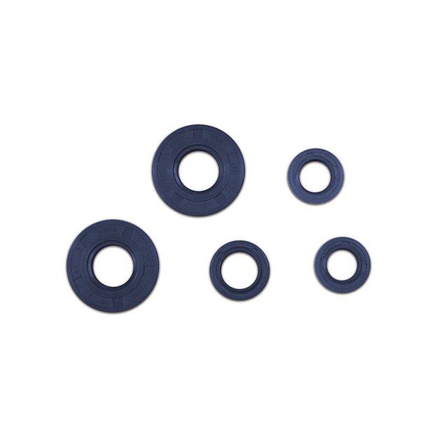 Wellendichtringset S50, KR51/1 blau Doppellippe