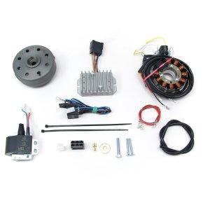 Lichtmagnetzündanlage 12V 150W mit integrierter vollelektronischer Zündung für TS250 (4.Gang) und TS250/1 (5. Gang)