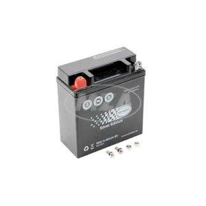 AGM-Batterie - 6V 11,0 Ah - 6N11A-1B